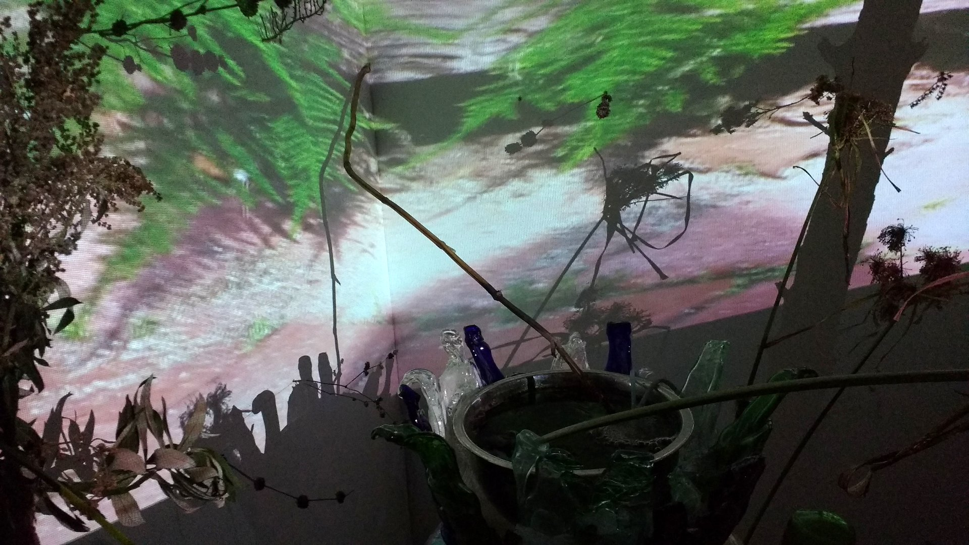 video projections on intersecting walls