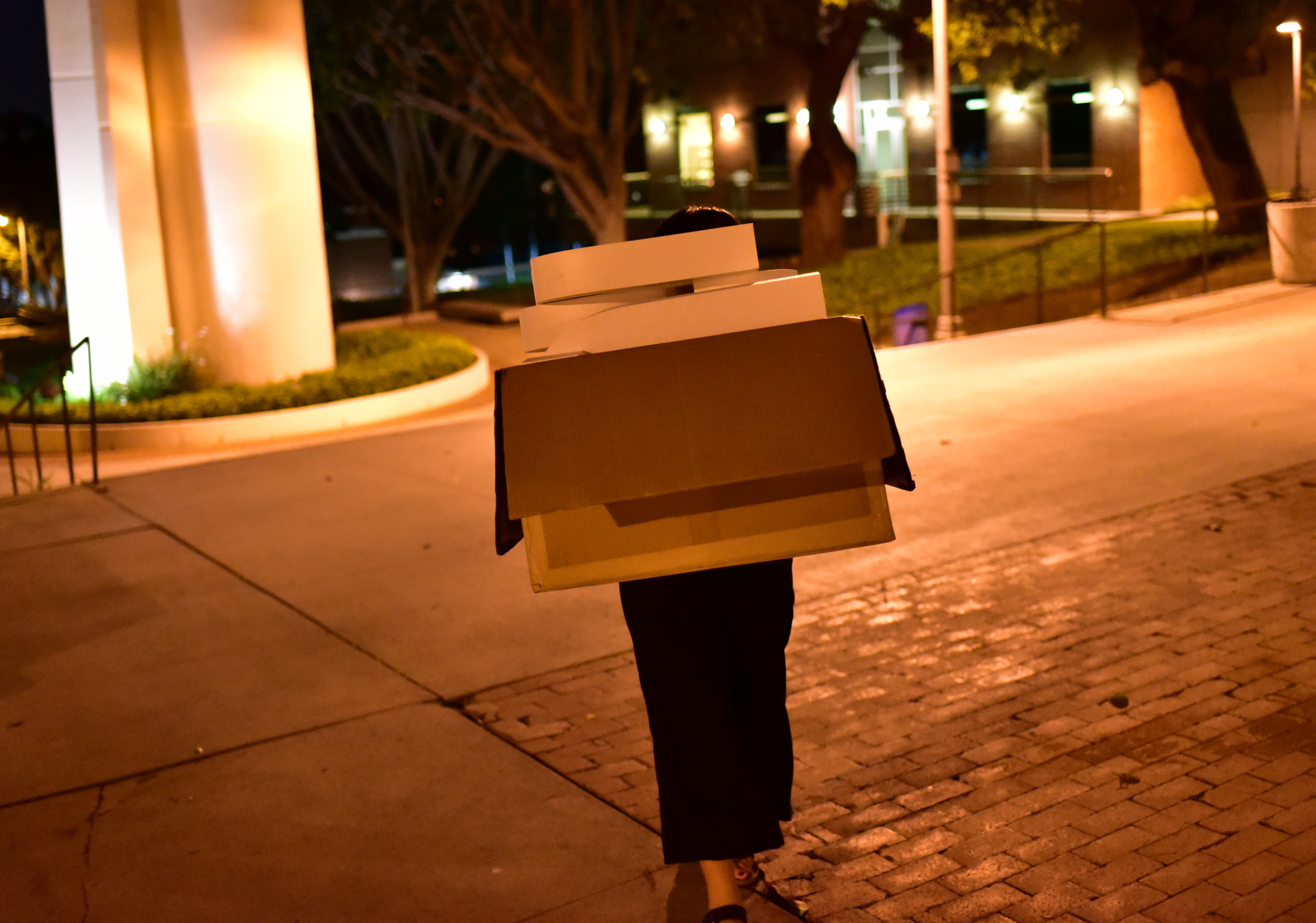 "TEDxCSULB curator Camille Raquel carries a box with the ""T-E-D-x-C-S-U-L-B"" letters across the CSULB campus at night. You can't actually see her face in this photo, the large box of letters covers it - you only see a box and legs"