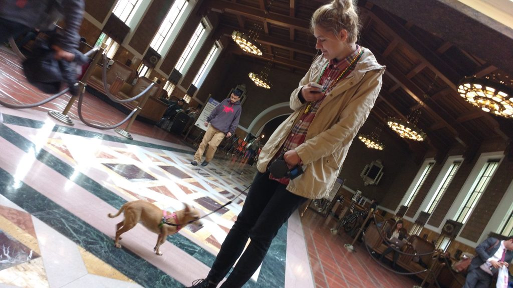 Tiki the Chihuahua and Dasha the Ukranian / Crimean / Russian human, walking through Union Station