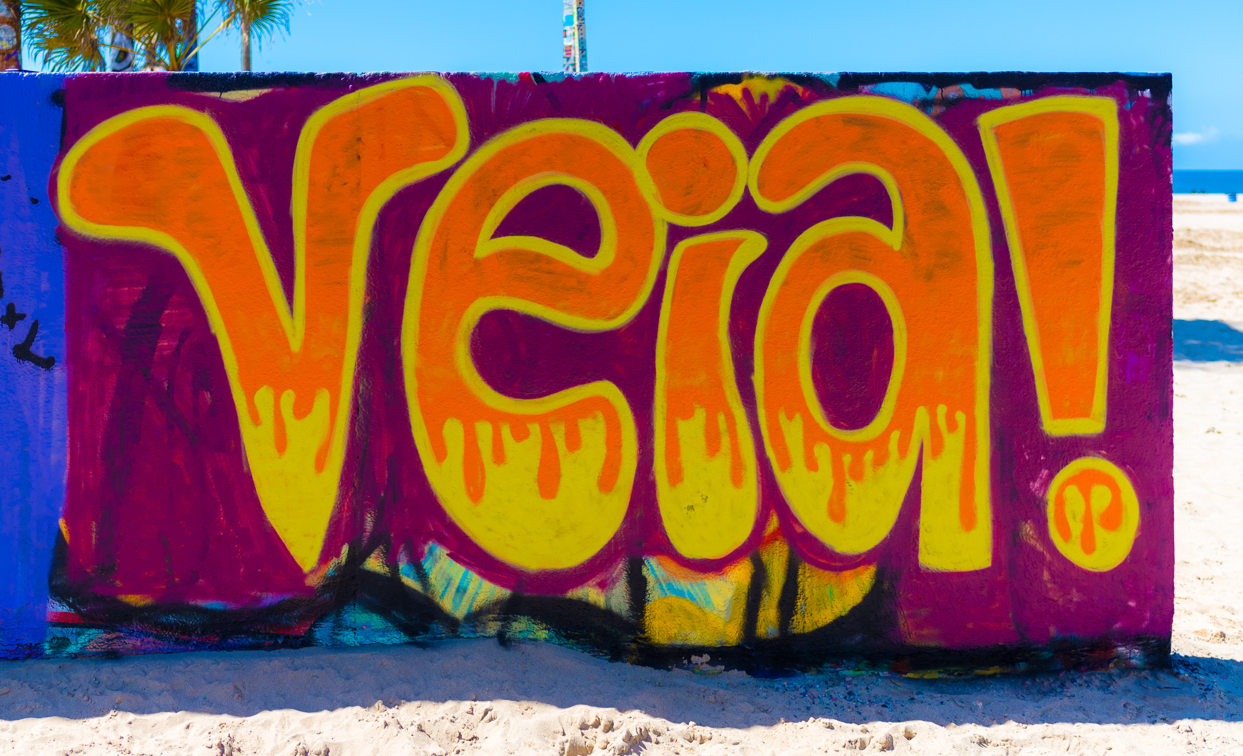 """Veia!"" as painted at the Venice Beach Legal Art Walls by Kay Luz"