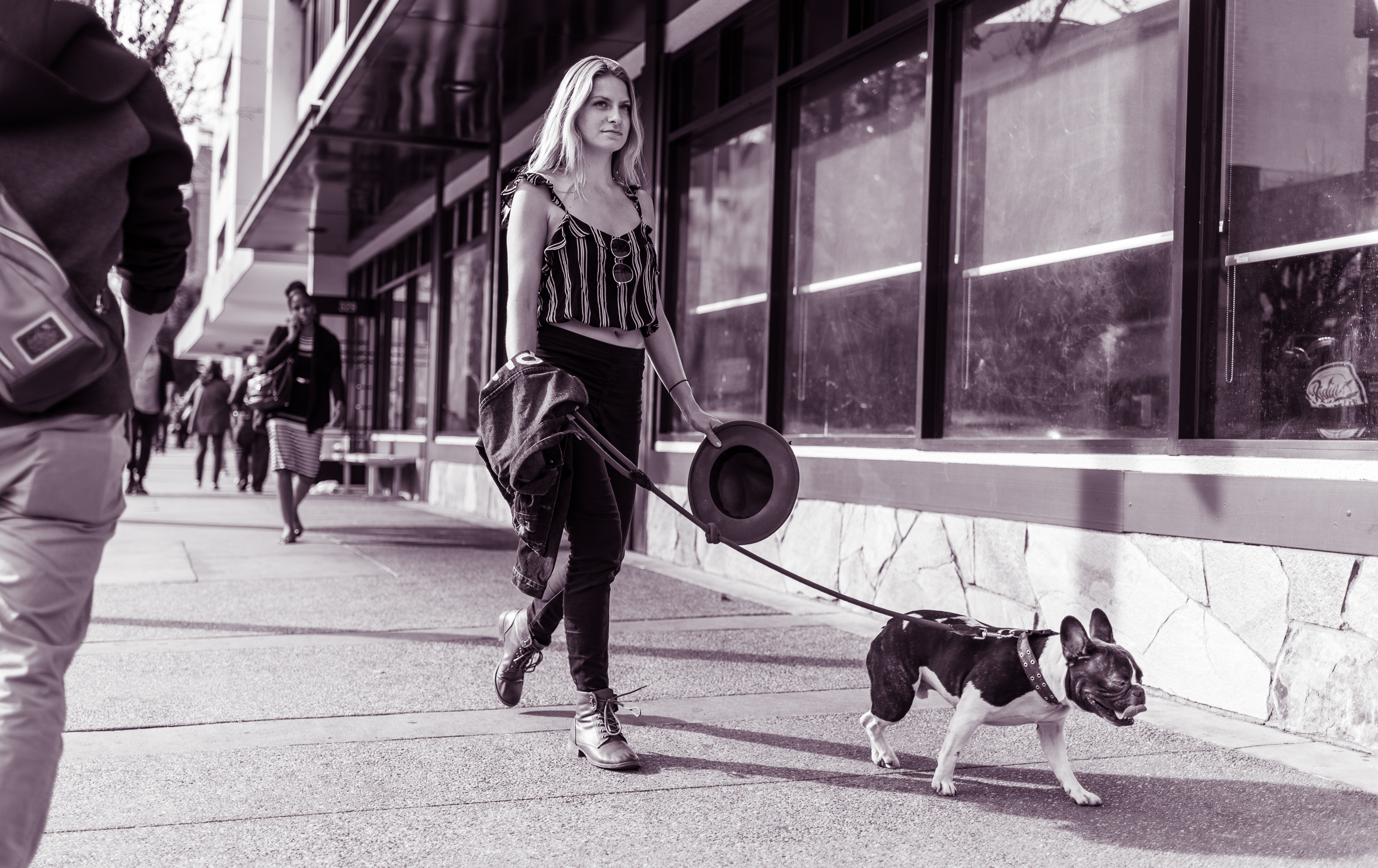 a woman, a dog, a leash. Walking down the street in Little Tokyo, Los Angeles, California