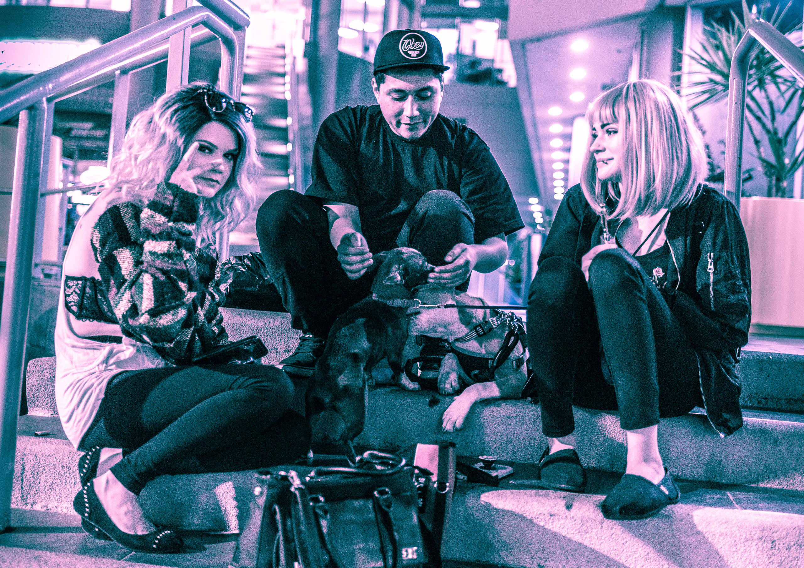 Two girls, a guy, and two dogs sit on a staircase on Hollywood Blvd. One girl looks at the other girl, while she looks at the camera, and the guy plays with the dogs.
