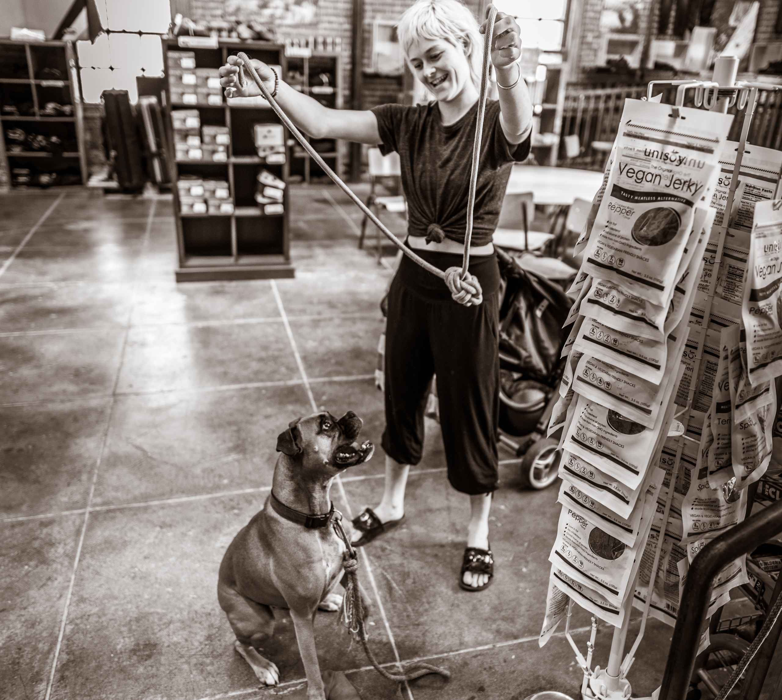 In the lobby of The Stronghold Climbing Gym at the Brewery Arts Complex in Downtown Los Angeles, a woman holds a heavy rope with a big knot in the center of it and tugs at it  playfully as a large dog follows the knot with his eyes and tries to grab at it