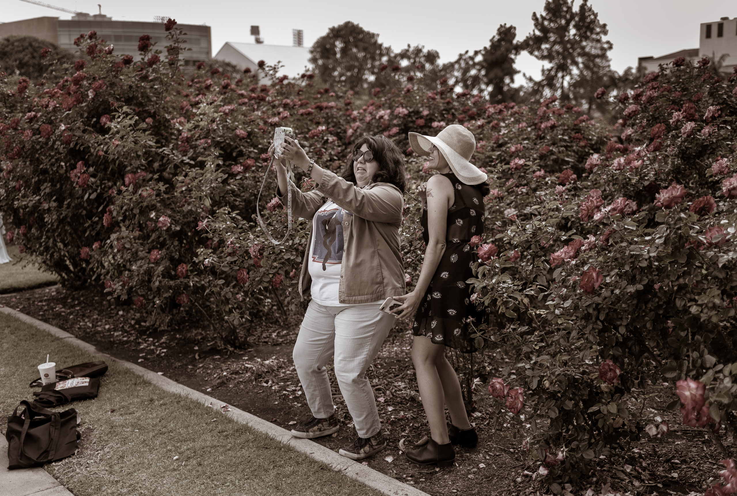 two women stand in the Rose Garden in Exposition Park in Los Angeles. They are surrounded by myriad large blooming roses. One holds an instant film camera out toward them. The one holding the camera is about to smile but is currently wearing a sort of grimace at the precariousness of fitting themselves in the frame and not falling into all the rose bushes