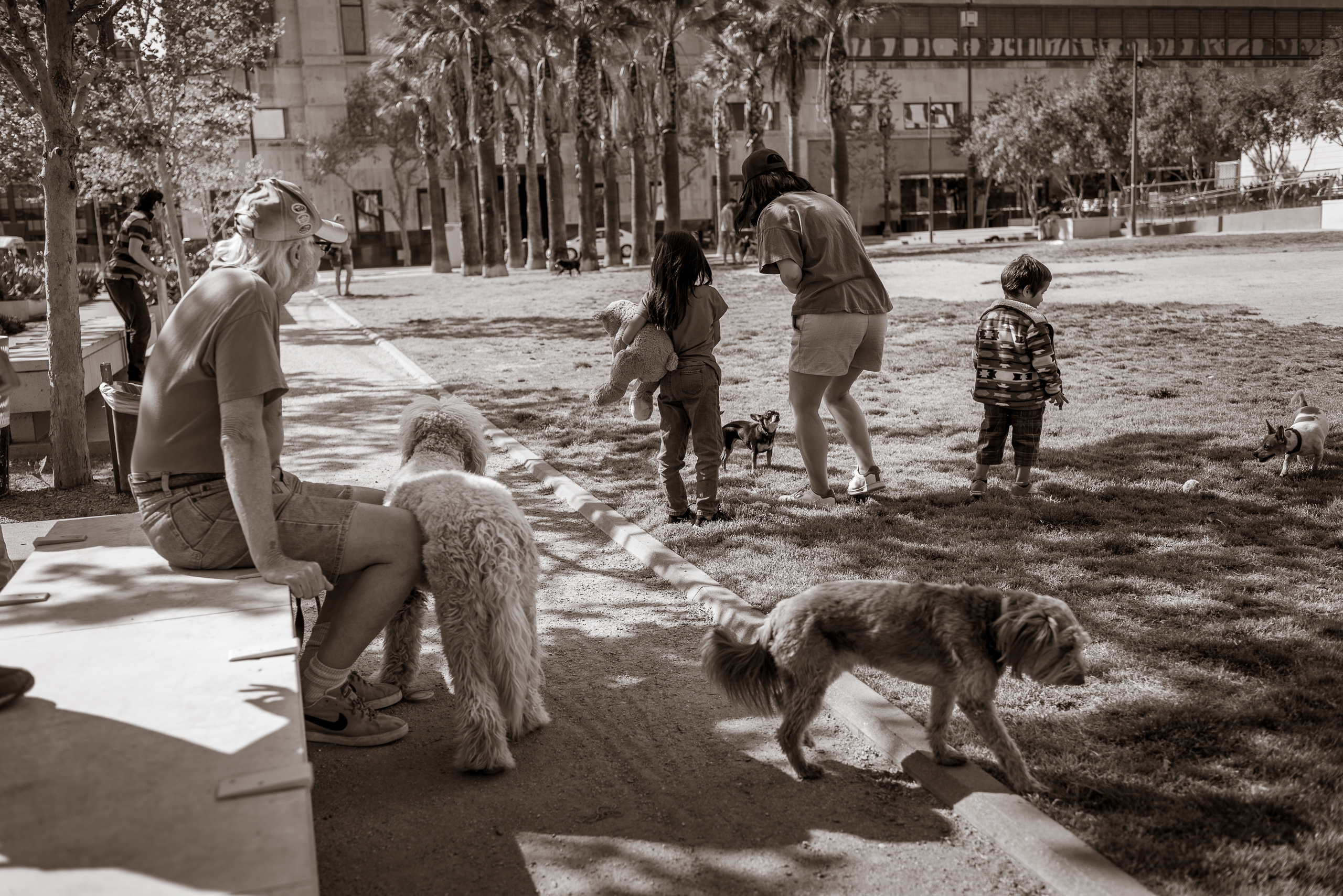 a small girl and a couple of adults are surrounded by many friendly dogs in a small dog park in downtown Los Angeles (DTLA)