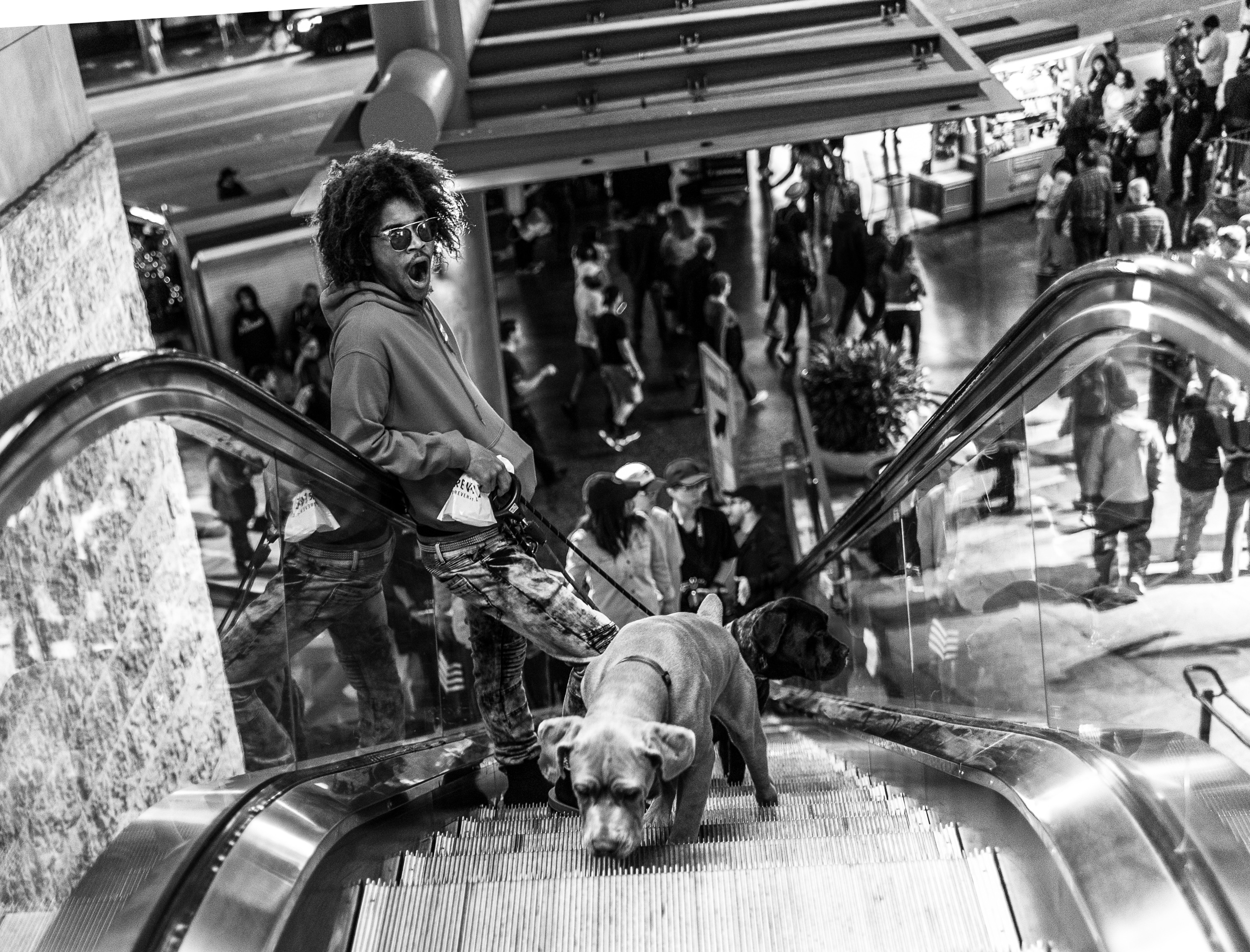 a guy with two dogs rides the escalator at the Hollywood & Highland center in Los Angeles, CA