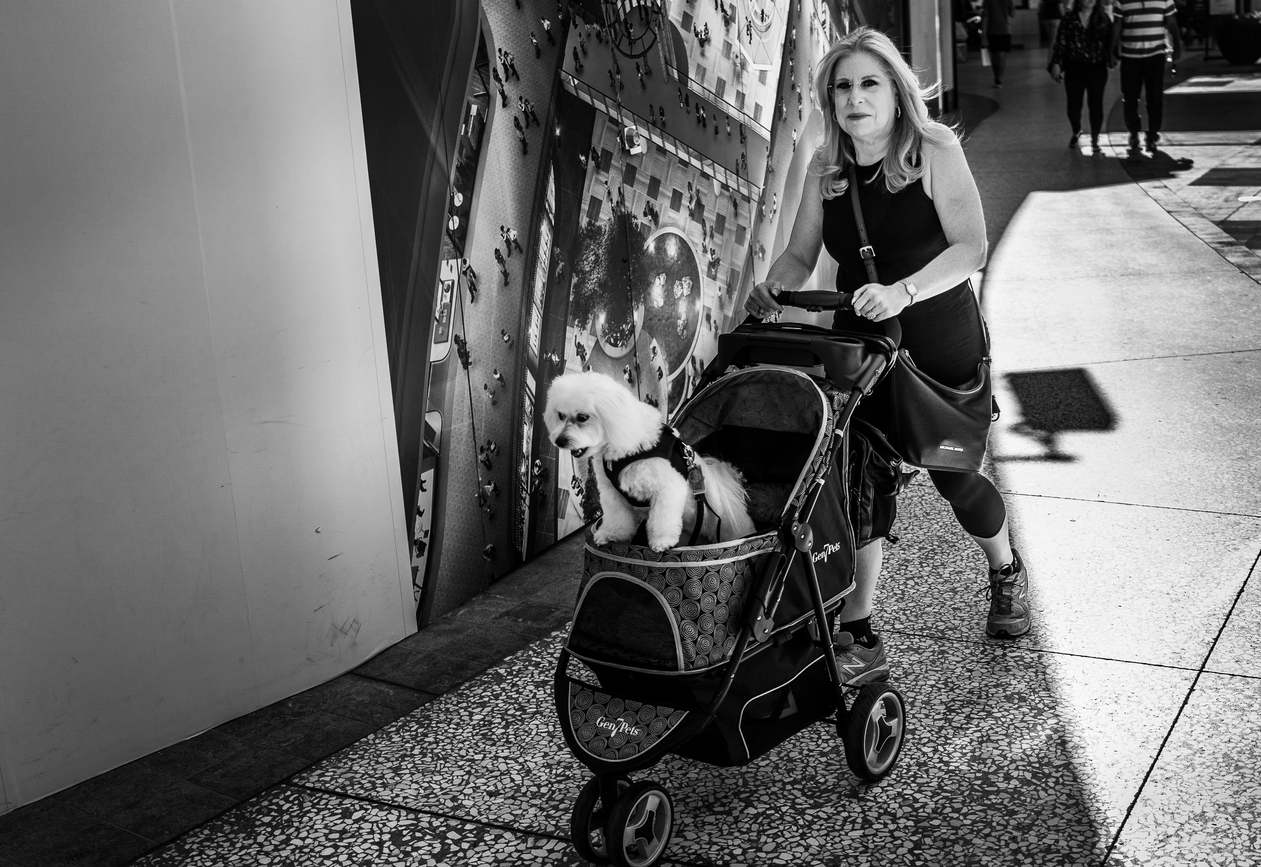 a woman in the Century City shopping  mall pushes her poodle through the mall with a Gen 7 Pets pet stroller