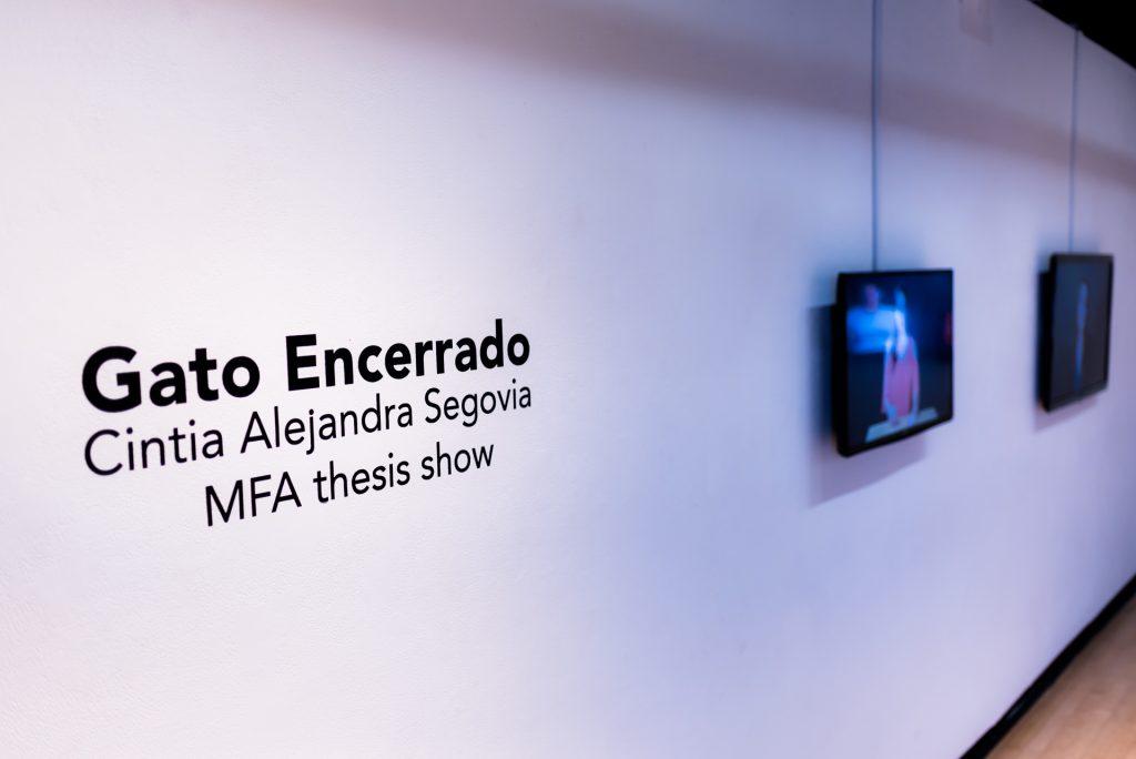 "Installation view of Cintia Alejandra Segovia's MFA Thesis Exhibition, ""Gato Encerrado"" in the Long Beach State University Merlino Gallery."